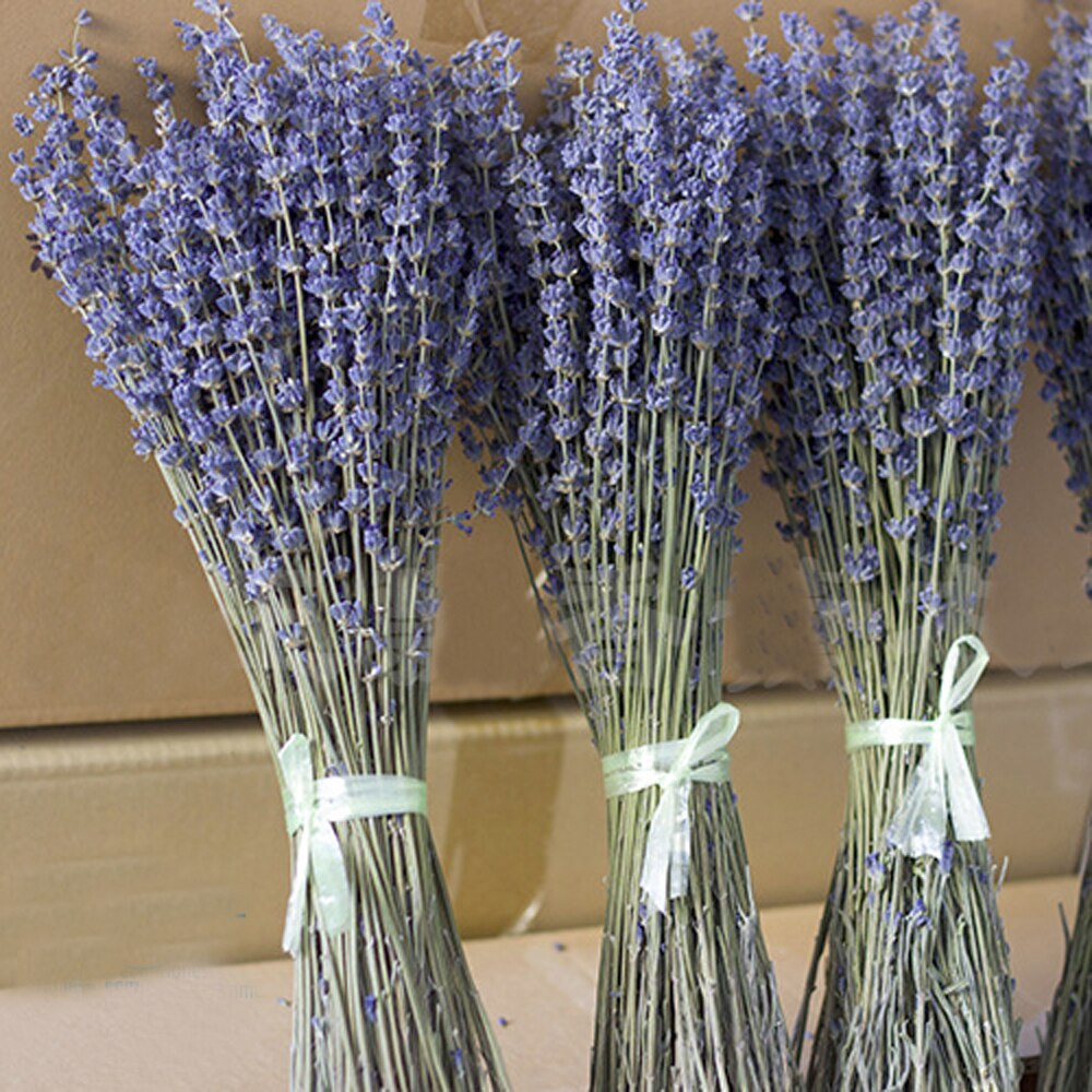 100g dried natural flower bouquets dried natural English Lavender flower bouquet&general blue lavender flower Bunches