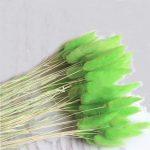 100pcs green color