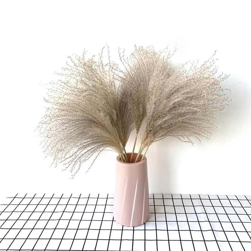 20pcs natural reeds wedding decoration home decoration flower artificial dry rose flowers valentine's day gift Babysbreath