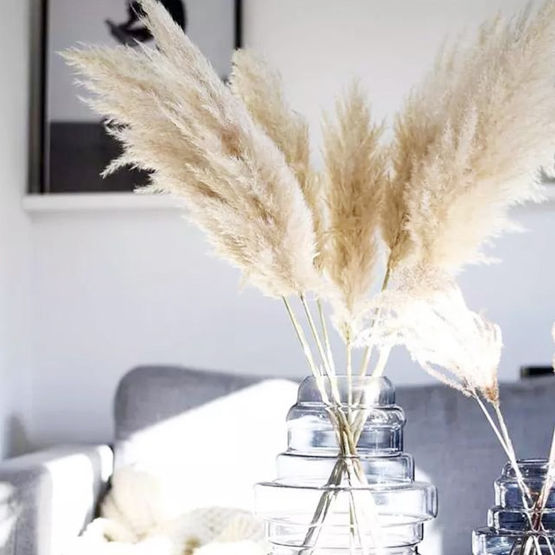 85-120cm Pampas Grass Extra Large Natural White Dried Flowers Bouquet Fluffy for Boho Vintage Style Home Wedding Flowers Decor
