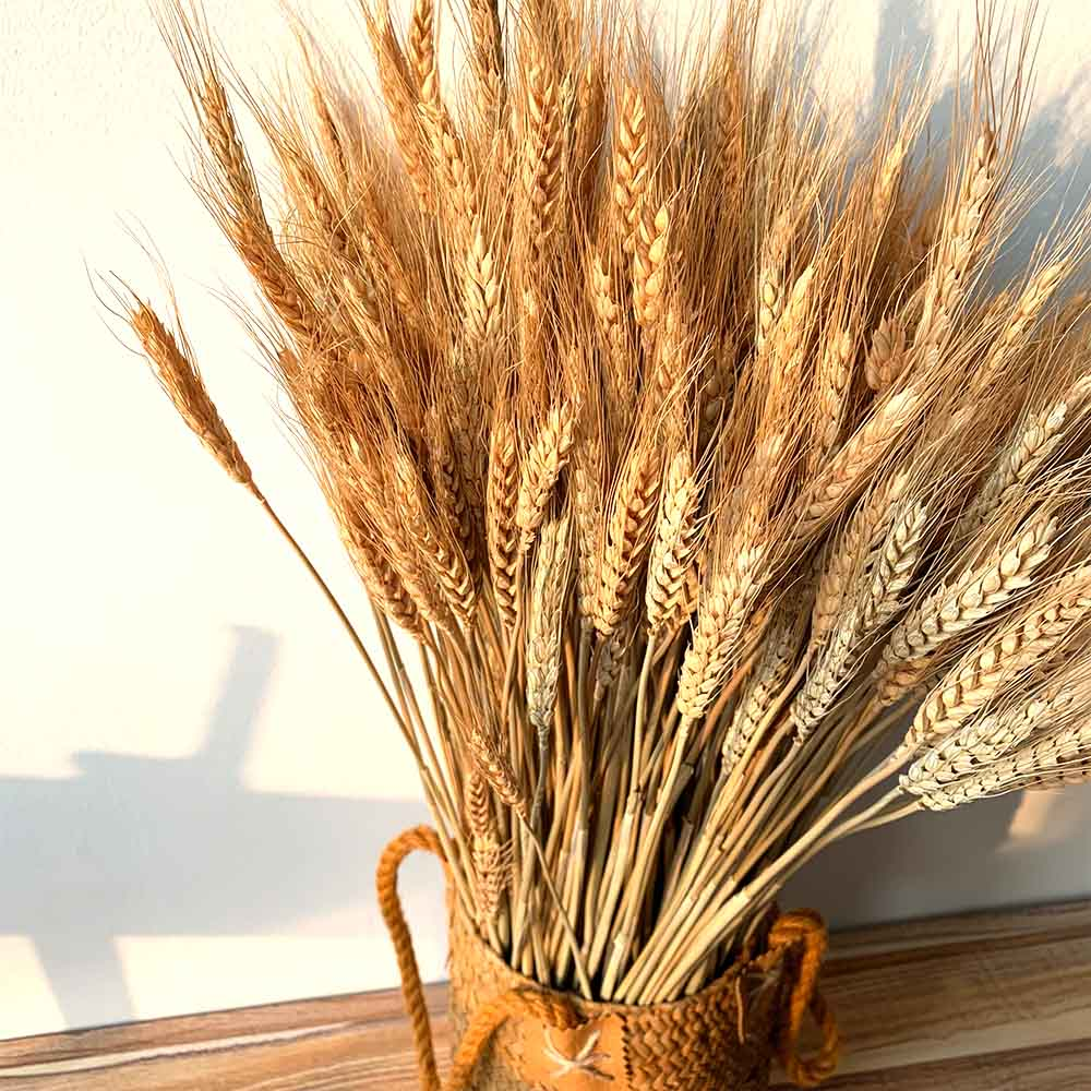 50Pcs/lot Real Wheat Ear Flower include Hand Woven Basket Natural Dried Flowers Wedding Home Decoration Wheat Bouquet