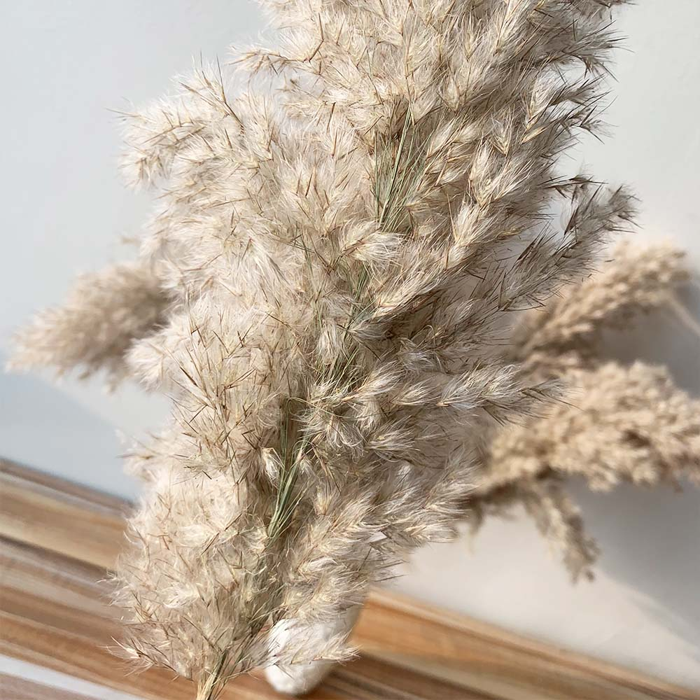 Pampas Grass Decor Dried Flowers Large Size Natural Reed Tall 19-22'' Wedding Flowers Bunch For Home Party Christmas Decor