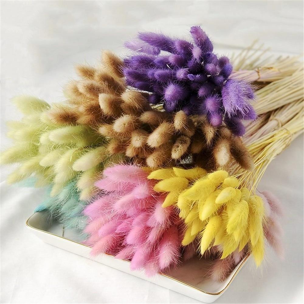 50pcs Purple natural flower bouquets dried bouquets rabbit tail grass flower bouquets