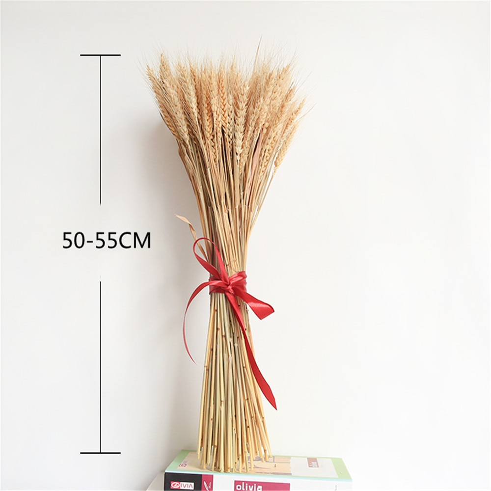 100pcs/pack Weeding decor wheat ears flower raw color natural dried flowers wheat bouquet No flowerpot