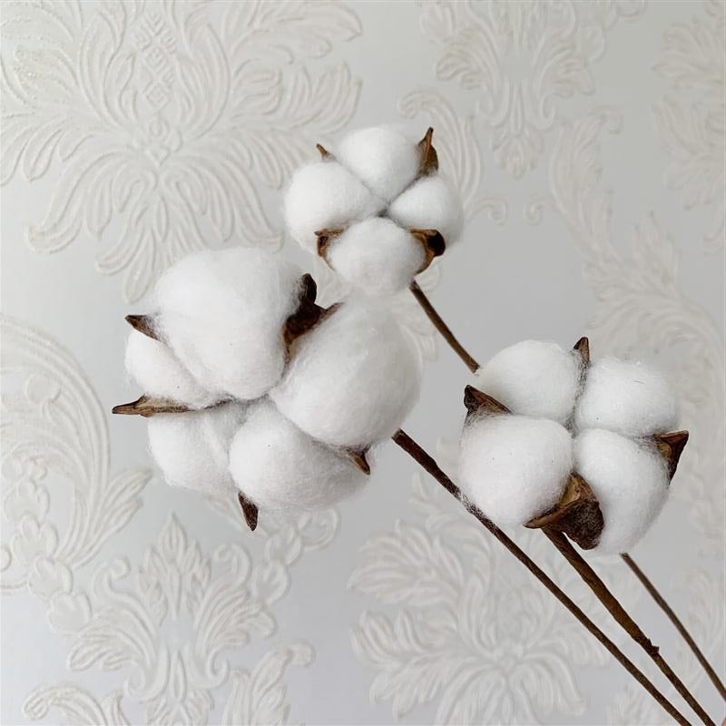Natural dried flowers Lagurus Ovatus Rabbit Tail Grass billy-Ball flowers Eucalyptus Branches Real Dried cotton Flowers NEW HOT